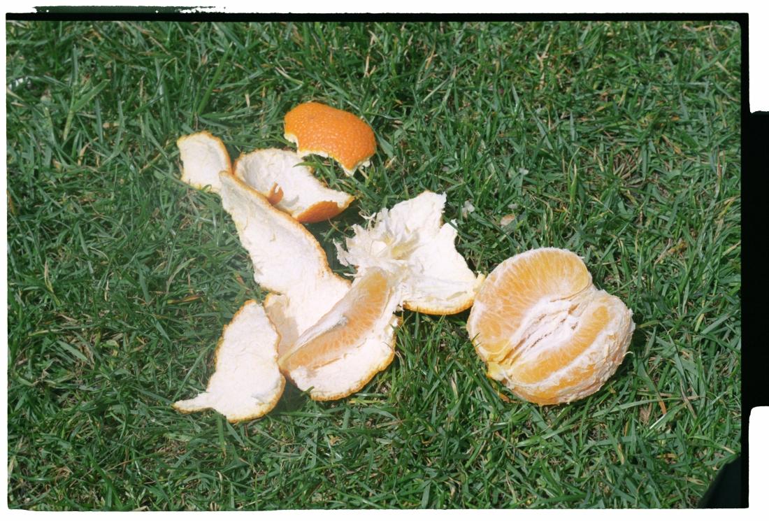 The Orange OJ